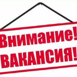 Актуальные вакансии МБДОУ «Детский сад № 452»